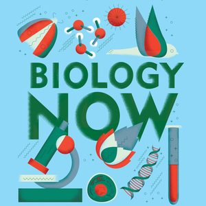 Test bank (Downloadable Files) for Biology Now 2nd High School Edition by Anne Houtman, Cindy Malone, Megan Scudellari ISBN: 9780393689792
